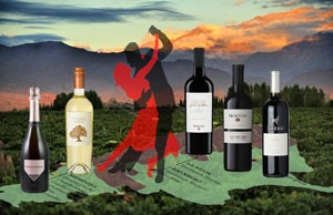 Argentina-wine-300-x-194